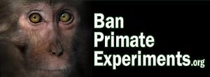Ban Primate Experiments