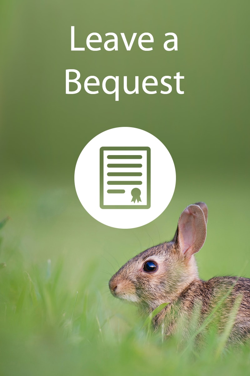 Leave a Bequest